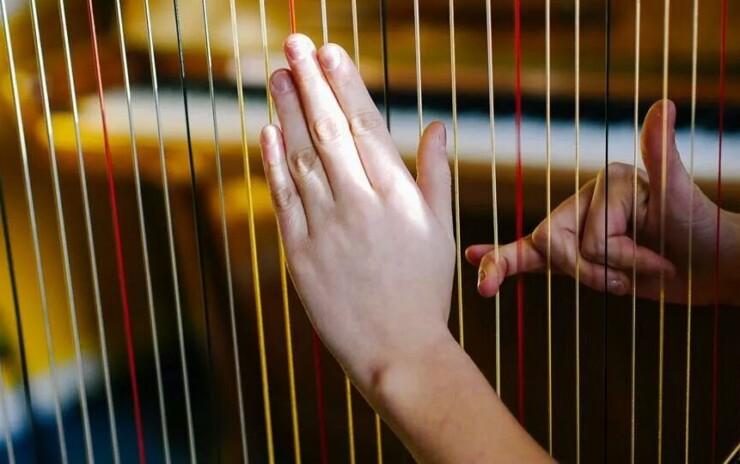 Škola harfe